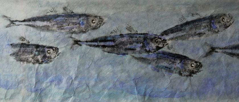 Gyotaku chinchards bleus
